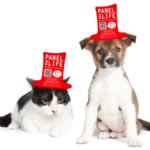 「より多く保護犬・保護猫を守るために、Panel for Life (命のパネル)」